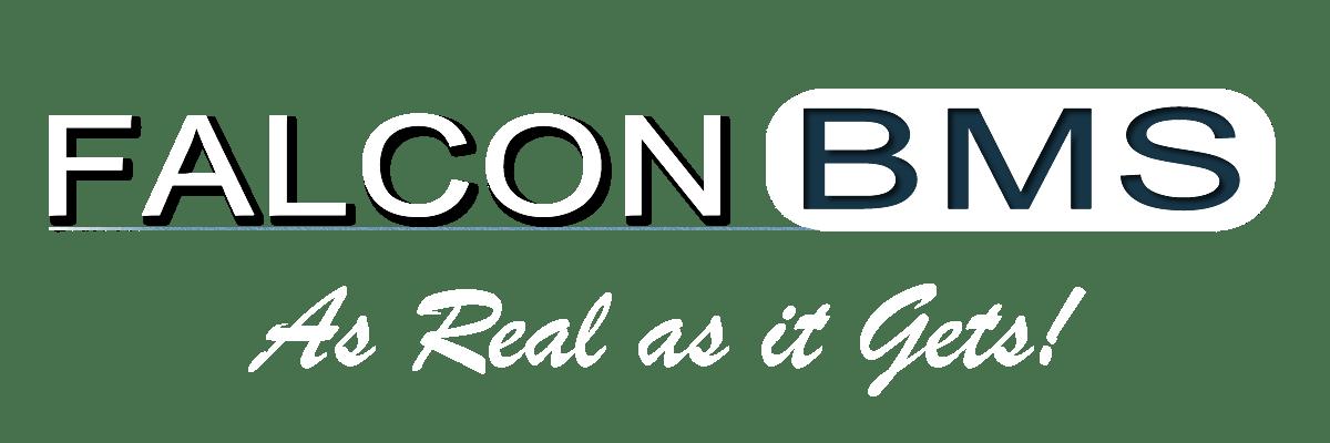 Falcon BMS banner